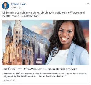 Die FPÖ versuchte, einen Skandal um die Bezirksrätin zu produzieren