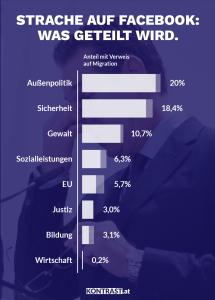 """Das Ergebnis der Analyse der Facebook Seite """"HC Strache"""""""