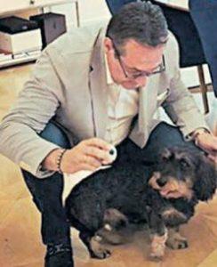 Tierschutz beschränkt sich bei der FPÖ auf Haustiere.
