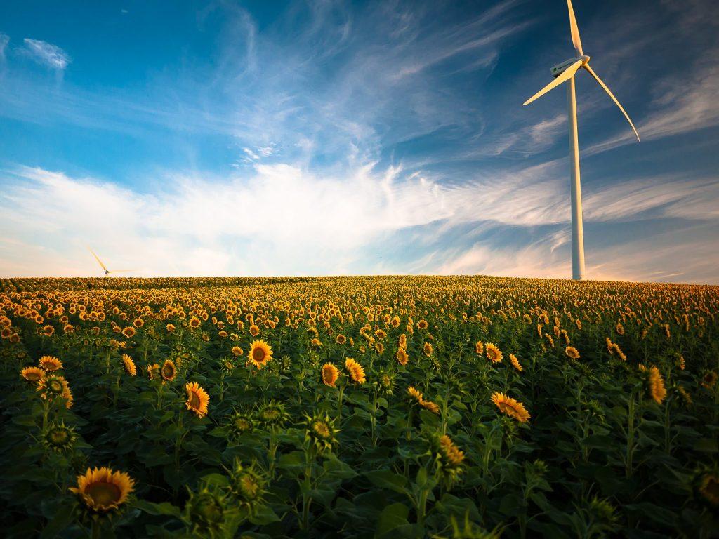 wien klimaschutzprogramm co2 emissionen