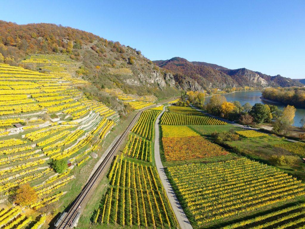 Landwirtschaft in der Wachau als Beispiel für Förderungen für Landwirte
